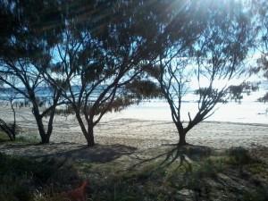 tugun beach north3_720x540